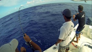 deep sea fishing in the Grenadines