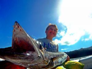 barracuda grenadines fishing