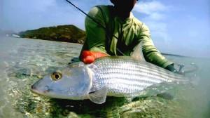 flyfishingunion7